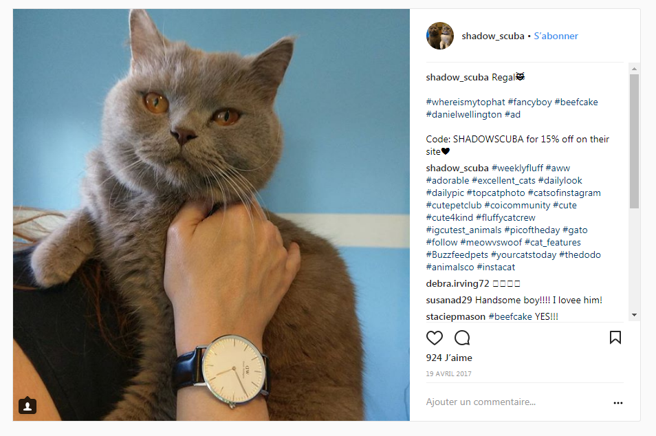 chat-micro-influenceurs-instagram